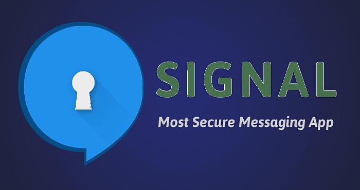 signal social media